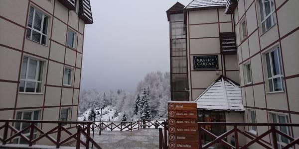 snežni pogled
